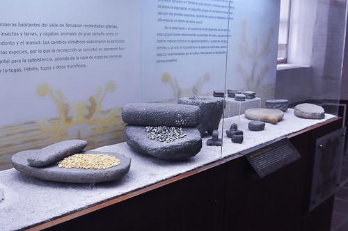 Museo del Valle de Tehuacán (12)