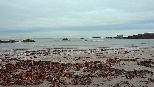 North Berwick beach looking toward Bass Rock