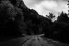American Fork Canyon SR92  Utah September 22 2016-5639