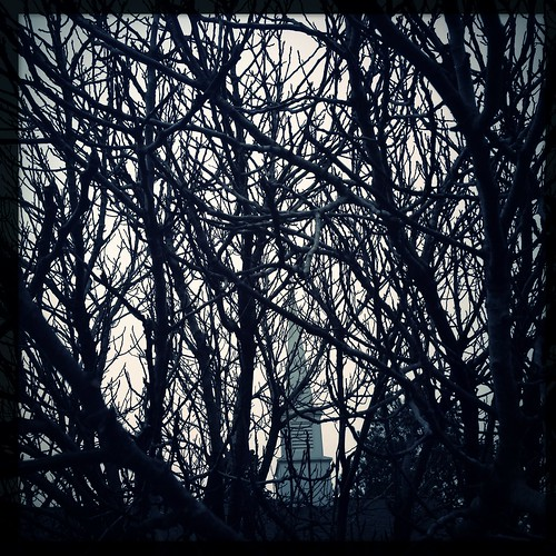 sky usa newyork tree church photography fig branches fineart steeple dominiquejames