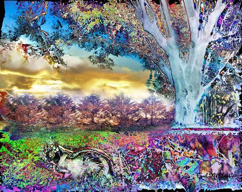 painterly nature cat landscape colorful vivid excellent soe magicmoments shocking hypothetical vividimagination thegalaxy artdigital sharingart awardtree gailpiland crazygeniuses ringexcellence netartii