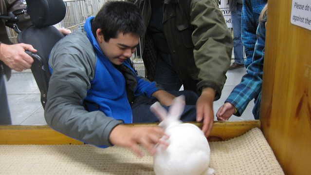 Jon's petting a white rabbit