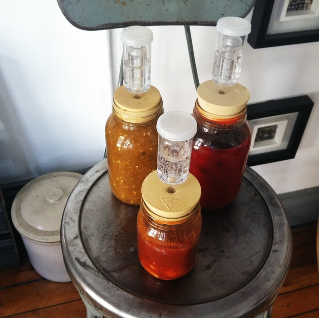 Update: Refermenting Hot Sauce (WIth Air Locks).. 3 Months and Counting Pepper (Hot) Hot Pepper December