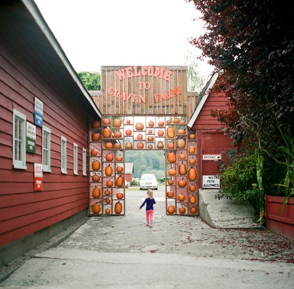 2012_0929_Pumpkins06.jpg