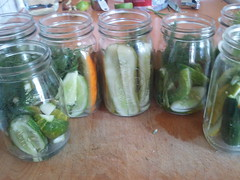 pickled cucumber, pickling, mason jar, food preservation, food,