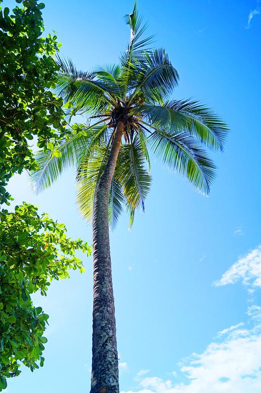Isla Grande, Panama