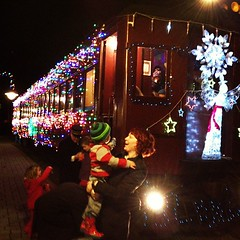 Holiday Light Express