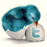 large_blue-bird-twitter-icon-pack1-1