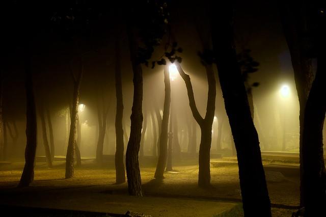365/366: El parque encantado