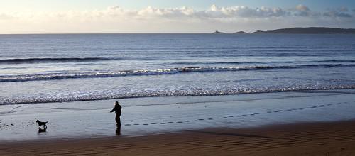 new morning sea dog man beach swansea sunrise walking 1 bay early sand day january footsteps years 2013