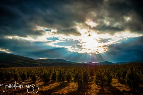trees winter sun foothills mountains field landscape nc nikon ray north carolina rays sunrays d80