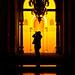 IMG_    6284 by ibrahem_toryh