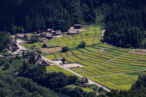 白川郷 - Shirakawa-go
