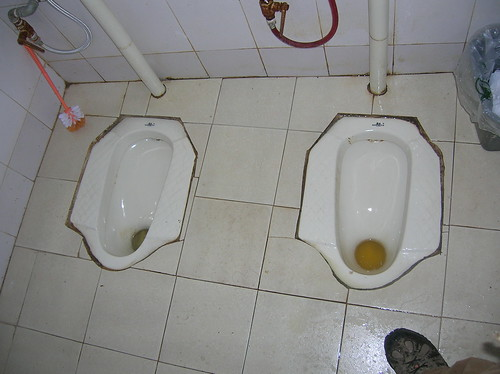 Chinese dual squat toilets
