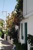 Kreta 2007-2 241