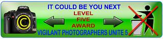 AwardL5.jpg