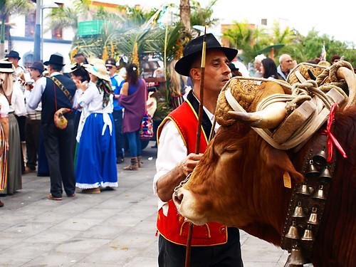 Fiesta de San Abad, Buenavista del Norte, Tenerife