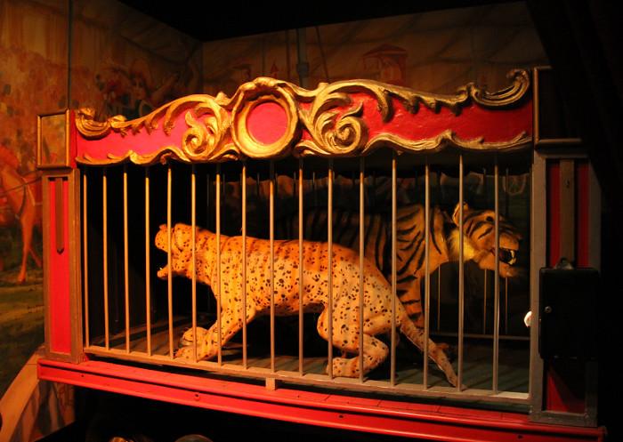 circus_tigers