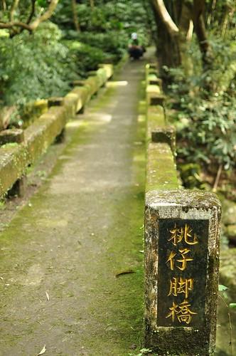 坪頂古圳步道-桃仔腳橋