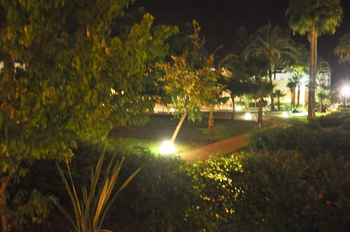 Jardines interiores nocturnos