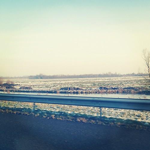 Snowy Dutch landscape