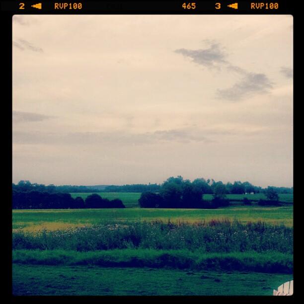 Livet i gravhgarnas landskap