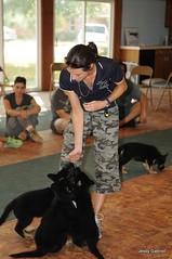 Starmark Animal Behavior Center