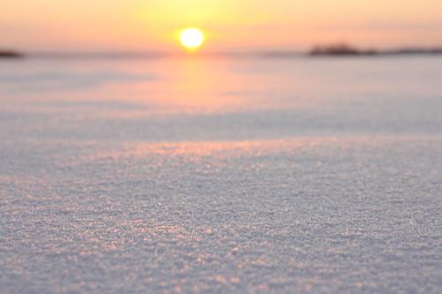 winter finland landscape scenery december wintersolstice 2012 vaasa winterscape vasa ostrobothnia 211212 vintersolstånd 122112