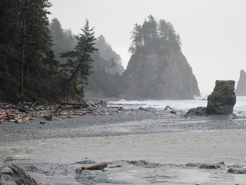 Olympic National Park - December 20, 2012