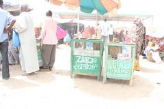 Camel Market (25)