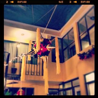 #piñata #posada #navidad #mexico