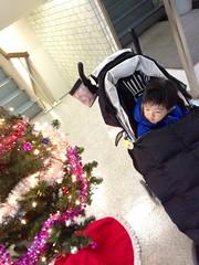 朝の散歩に出発! 2012/12/23