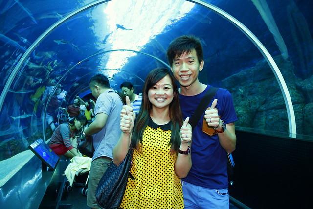 RWS S.E.A Aquarium 674