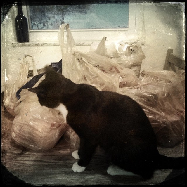 All your sack are belong to Pig.