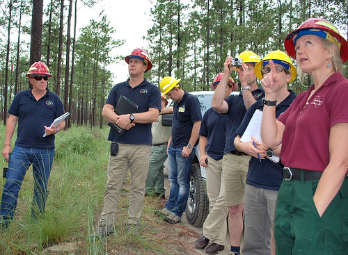 Debbie Casto, Forest Service fire management officer for the National Forests in Florida, discusses the precautions taken before conducting a prescribed burn near threatened and endangered species sites on the Apalachicola National Forest. The forest is home to several endangered species such as the red-cockaded woodpecker. (Forest Service photo by Susan Blake)