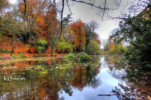 uk autumn trees england lake pool forest woodland bristol pond woods somerset hdr northsomerset abbotsleigh abbots abbotspool photomatixpro sonydschx20v