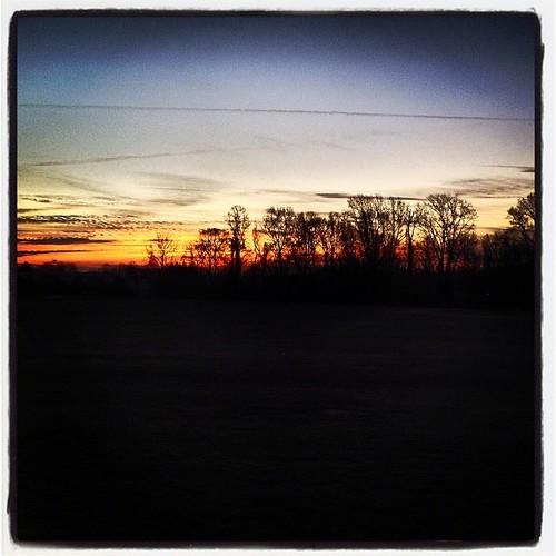 sun tree sunrise square dawn january lofi squareformat iphoneography instagramapp uploaded:by=instagram foursquare:venue=4d5db92c1ddd6dcbb24c1ed8