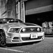 2013 Ford Mustang by Doug van Kampen