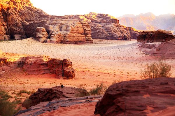 Pensando en el desierto
