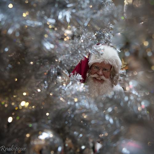 Santa! by RaminN
