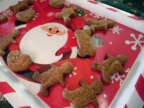 2012-12-13 - Gingerbread Bones - 0006