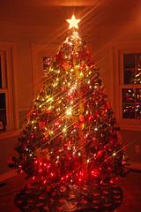 Christmas Tree - 2012