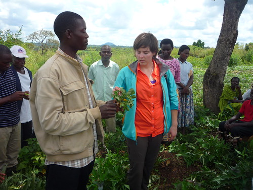 Man and woman discussing a plant with farmers listening around them