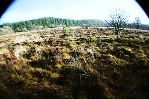 Sherriffmuir Battlefield, Scotland