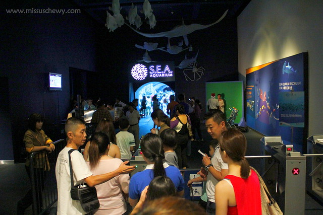 RWS S.E.A Aquarium 395