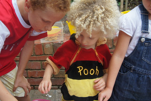 Winnie the Pooh Party DSC07744