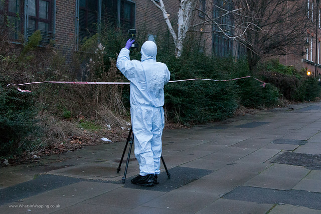 Wapping woods crime scene - 29 December 2012