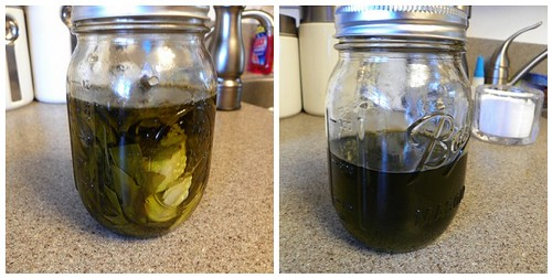 Basil Garlic Infused Olive Oil