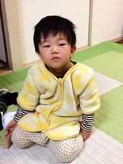 朝起きたてとらちゃん 2013/1/16