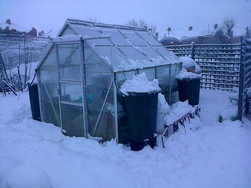 Greenhouse in snow Jan 13